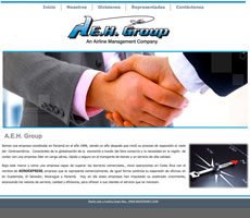 p-web-AEH-group